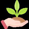 planting e1603490140174 NGS-Sensors srl Soluzioni